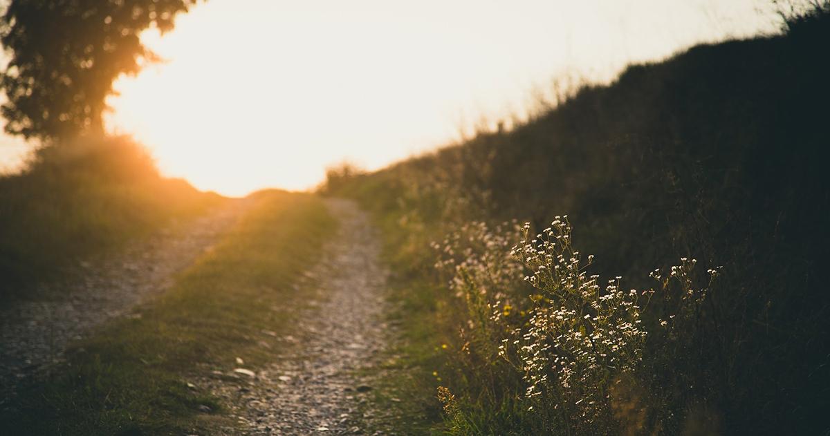 Langer Weg zum Erfolg im Leben